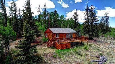 Park County Single Family Home Active: 237 Haida Road