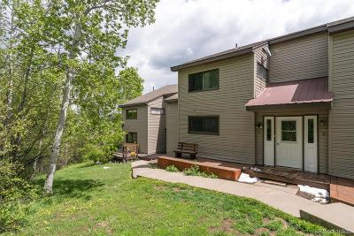 Routt County Condo/Townhouse Active: 23090 Schussmark Trail #C