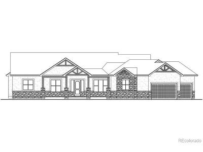 Parker Single Family Home Under Contract: 10906 Shadow Pines Road