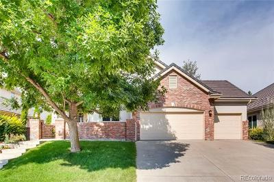 Arapahoe County Single Family Home Active: 27 Coral Place