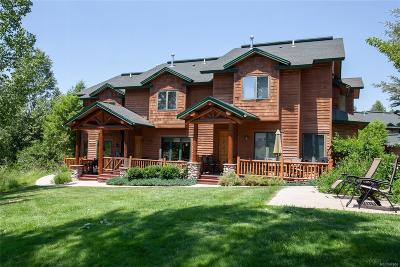 Steamboat Springs Condo/Townhouse Under Contract: 3496 Spring Valley Drive #2