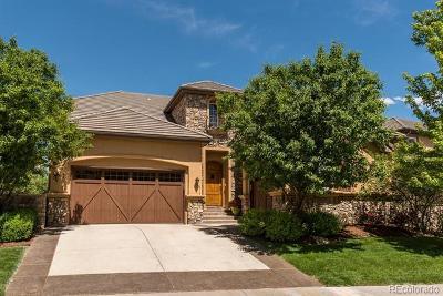 Denver Single Family Home Active: 9113 East Vassar Avenue