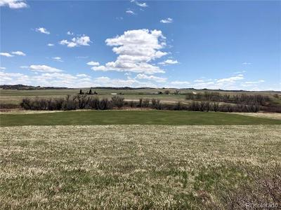 Castle Rock Residential Lots & Land Active: 4720 South Castlewood Canyon Road