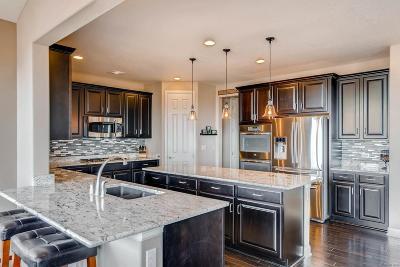 Parker Single Family Home Active: 13785 Worthington Place