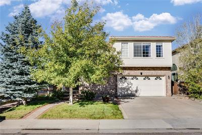 Highlands Ranch Single Family Home Active: 9602 Townsville Circle