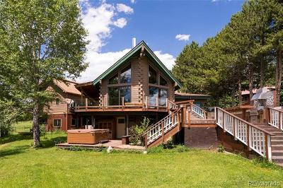 Routt County Single Family Home Active: 1471 Robert E Lee Lane