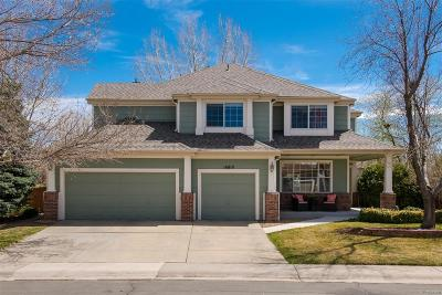 Parker Single Family Home Under Contract: 16810 Amberstone Way