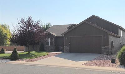 Johnstown Single Family Home Active: 217 Glenroy Drive