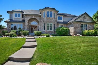 Highlands Ranch Single Family Home Active: 3990 White Bay Drive