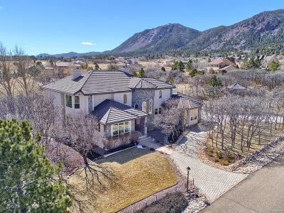 Monument Single Family Home Active: 765 Forest View Circle