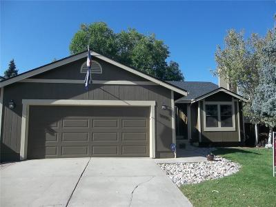 Highlands Ranch Single Family Home Active: 8995 South Coyote Street