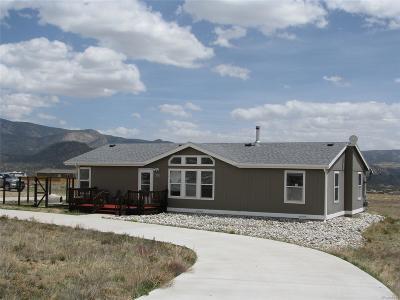 Buena Vista Single Family Home Under Contract: 30799 Tanner Drive