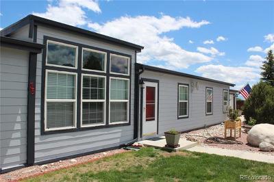 Buena Vista Single Family Home Active: 27665 County Road 313 #35