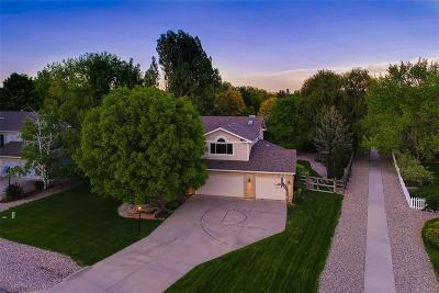 Niwot Single Family Home Under Contract: 6888 Peppertree Drive