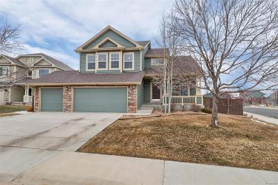 Castle Rock Single Family Home Active: 5355 High Plains Place