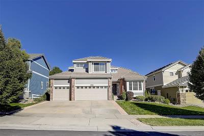 Parker Single Family Home Active: 12995 Banyon Circle