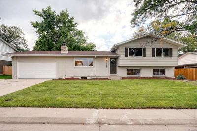 Northglenn Single Family Home Active: 10669 Varese Lane