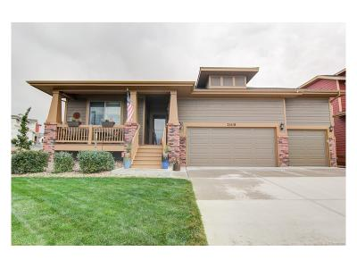 Parker Single Family Home Active: 21518 East Idyllwilde Drive