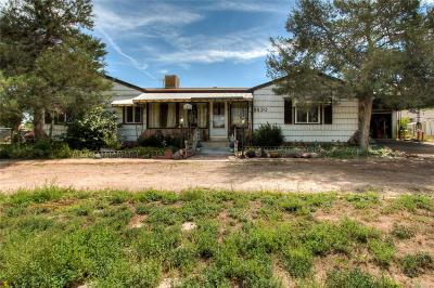 Adams County Single Family Home Active: 6530 Olive Street