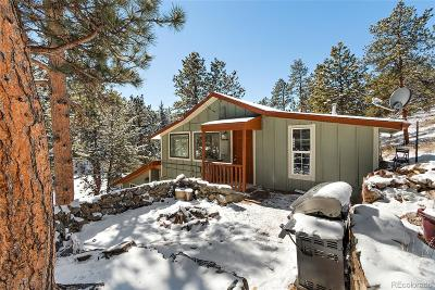 Evergreen Single Family Home Under Contract: 5437 South Brook Forest Road