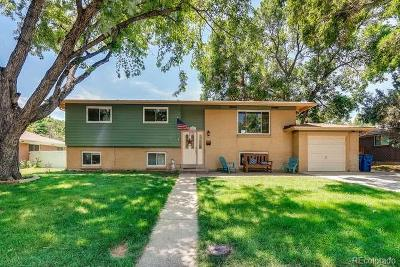 Evergreen, Arvada, Golden Single Family Home Active: 11066 West 62nd Avenue