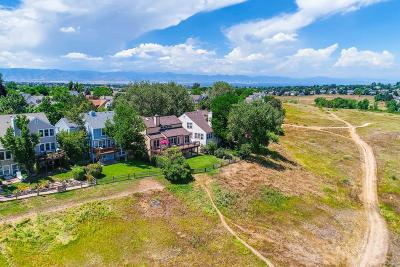 Timberline Ridge Single Family Home Under Contract: 2175 Mountain Sage Drive