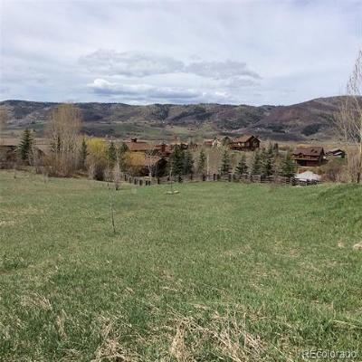 Steamboat Springs Residential Lots & Land Active: 2524 Melrose Lane