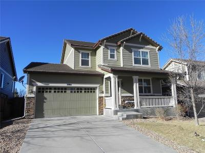 Castle Rock Single Family Home Active: 2984 Deerfoot Way