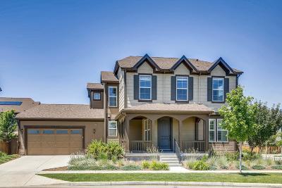 Denver Single Family Home Active: 2847 Kingston Street