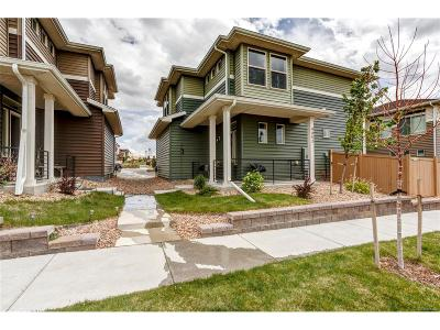 Castle Rock Single Family Home Under Contract: 4452 Elegant Street