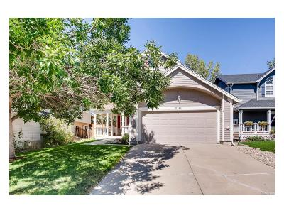 Douglas County Single Family Home Active: 21749 Saddlebrook Drive