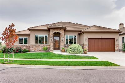 Littleton Single Family Home Under Contract: 5081 South Allison Way