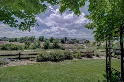 Highlands Ranch CO Single Family Home Active: $625,000