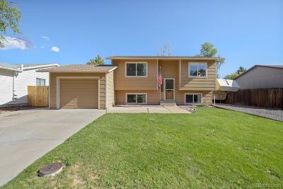 Arvada Single Family Home Active: 8795 West 86th Drive