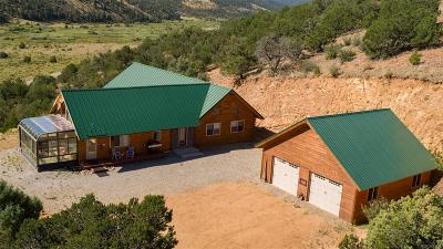 Villa Grove Single Family Home Active: 52299 County Road Ll56