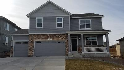 Douglas County Single Family Home Active: 12169 Pine Post Drive