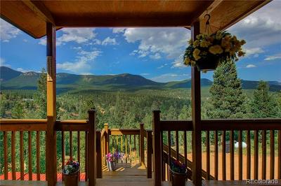 Park County Single Family Home Active: 258 Wise Road