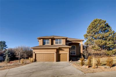 Castle Rock Single Family Home Sold: 525 Valley Drive