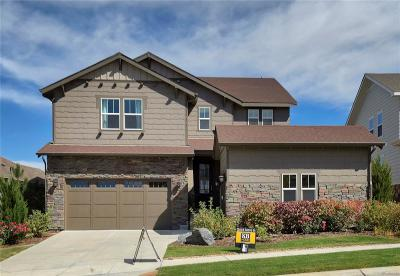 Aurora Single Family Home Active: 7808 South Flat Rock Court