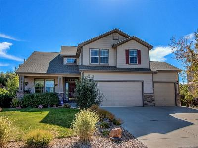 Castle Rock Single Family Home Active: 1078 Eaglestone Drive
