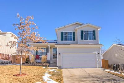 Parker Single Family Home Active: 10850 Longs Peak Lane