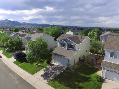 Littleton Single Family Home Active: 9595 Elk Mountain Circle