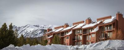 Summit County Condo/Townhouse Active: 91500 Ryan Gulch Road #91501A
