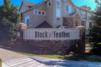 Castle Rock Condo/Townhouse Active: 452 Black Feather Loop #611