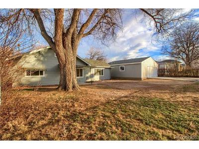 Wheat Ridge Single Family Home Under Contract: 4080 Eaton Street