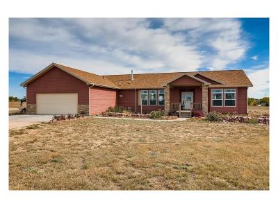 Peyton Single Family Home Active: 4605 Windmill Flats Court