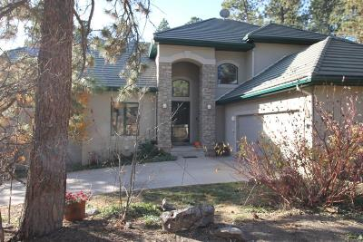 Castle Rock Single Family Home Active: 4537 Silver Dale Court