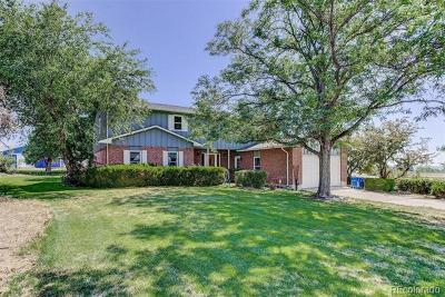 Lafayette Single Family Home Active: 9625 Phillips Road