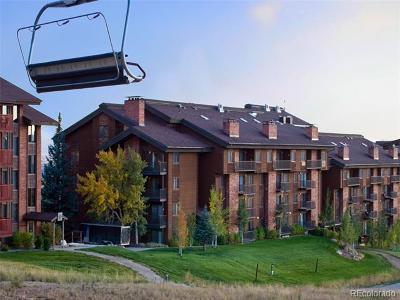 Steamboat Springs Condo/Townhouse Active: 2420 Ski Trail Lane #315