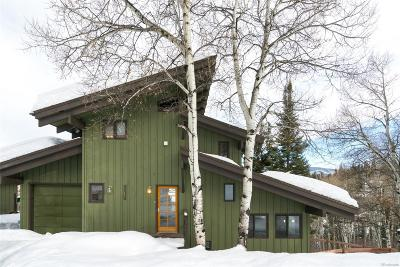 Steamboat Springs Single Family Home Active: 36882 Tree Haus Drive